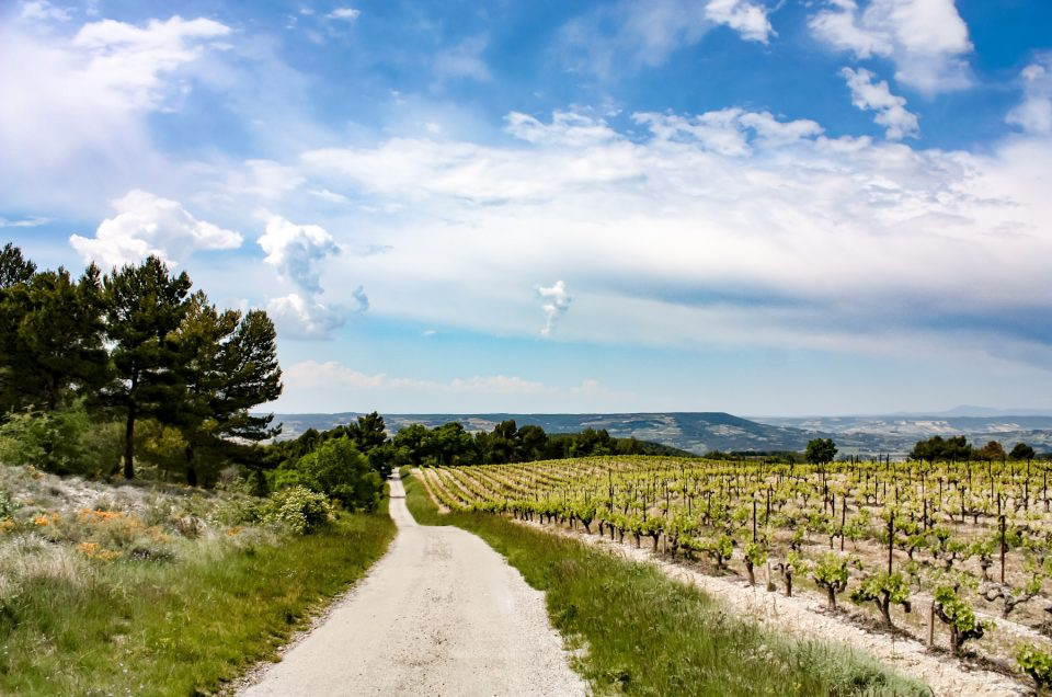 Fietsen in Frankrijk: dit zijn de mooiste routes