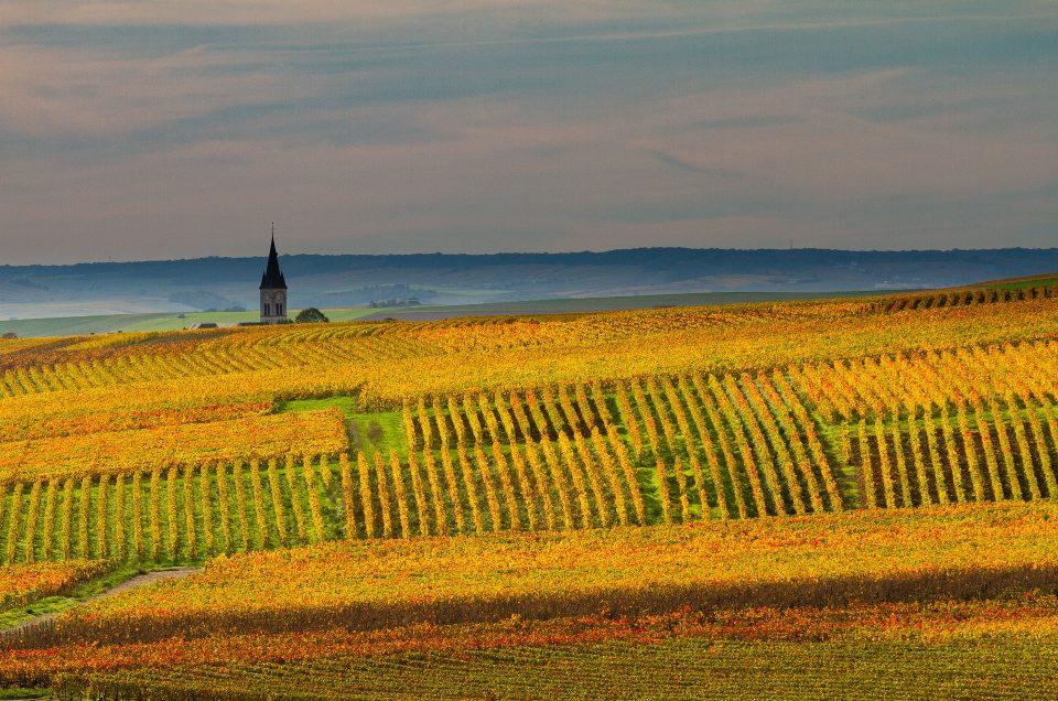 Dit zijn de mooiste wijngaarden van Frankrijk